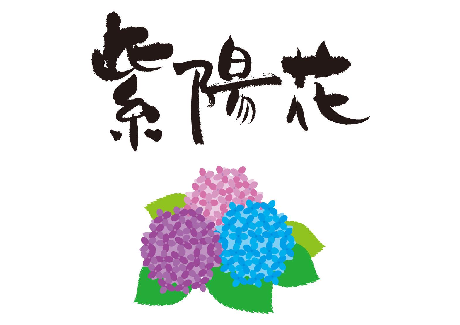 http://shinko-pk.co.jp/blog/ajisai.jpg